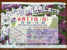 sagamihara-park20170604_2.jpg