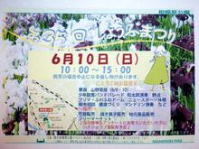 sagamihara-park20180605_2.jpg
