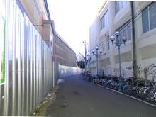 sagamiono20090111_5.jpg