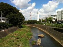 sakaigawa20110912_2.jpg