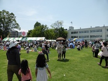 shibafu20140503_1.jpg