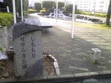 shimomori-seseragi20080612_1.jpg