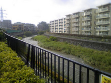 shimomori-seseragi20080612_2.jpg