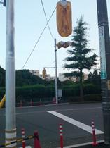 shingo20100716_1.jpg