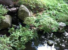 siyakusho20120703_2.jpg