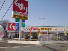 sugi20100708.jpg