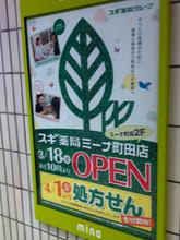 sugi20110316.jpg