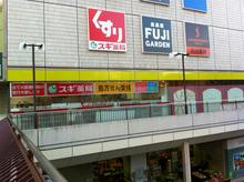 sugi20110317.jpg