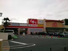 sugi20140817_2.jpg