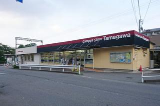 tamagawa20210301.jpg
