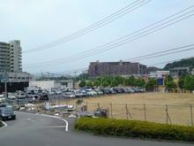 tamasakai20120615_2.jpg