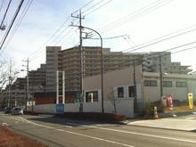 tamasakai20121215_1.jpg