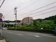 tamasakai20160723_1.jpg