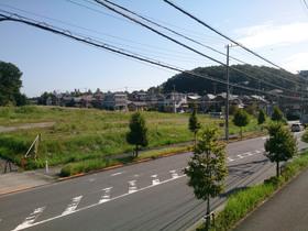 tamasakai20180505_2.jpg