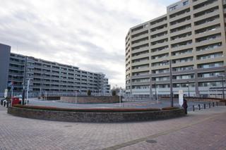 tamasakai20191207.jpg