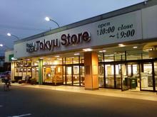 tokyu-store20090804_1.jpg