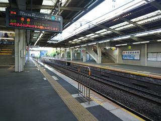 tsukushino20180511_1.jpg