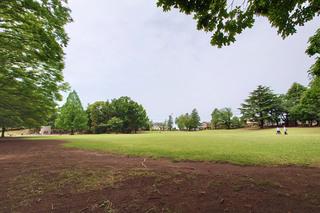 tsukushino20210619.jpg