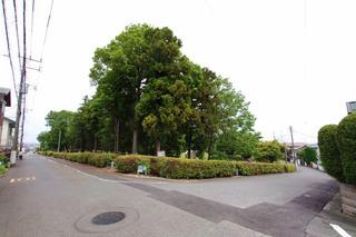 tsukushino20210905_2.jpg