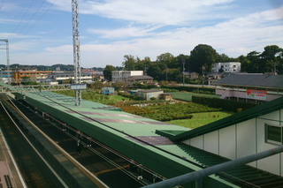 tsurukawa20190321_1.jpg