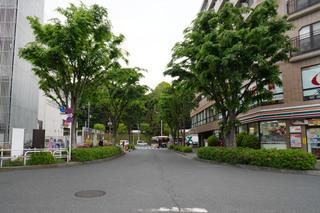 tsurukawa20190321_3.jpg