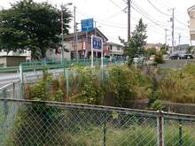 tsurukawakaido20150613_8.jpg
