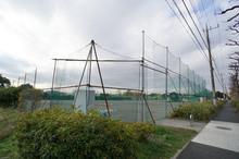 tsuruma-park20161202_5.jpg