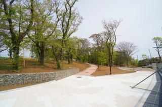 tsuruma-park20190427_2.jpg