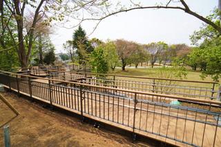 tsuruma-park20190427_5.jpg