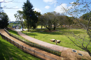 tsuruma-park20191028.jpg