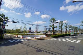 tsuruma-park20191102_15.jpg