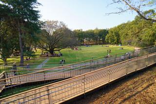 tsuruma-park20191102_4.jpg