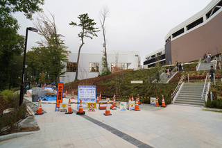tsuruma-park20191113_13.jpg