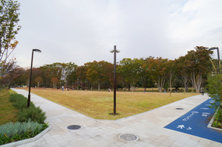 tsuruma-park20191113_2.jpg