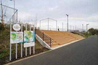 tsuruma-park20191113_7.jpg
