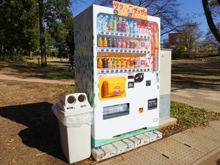tsuruma-park20191121_1.jpg