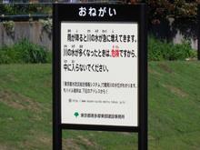 tsurumigawa20160430_8.jpg