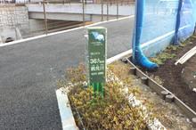 tsurumigawa20170330_5.jpg