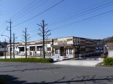 yakushidai20150303.jpg