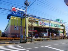yamada20180212_2.jpg