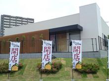 yuzuan20120615_1.jpg